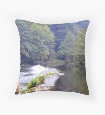 Ludlow Weir Throw Pillow
