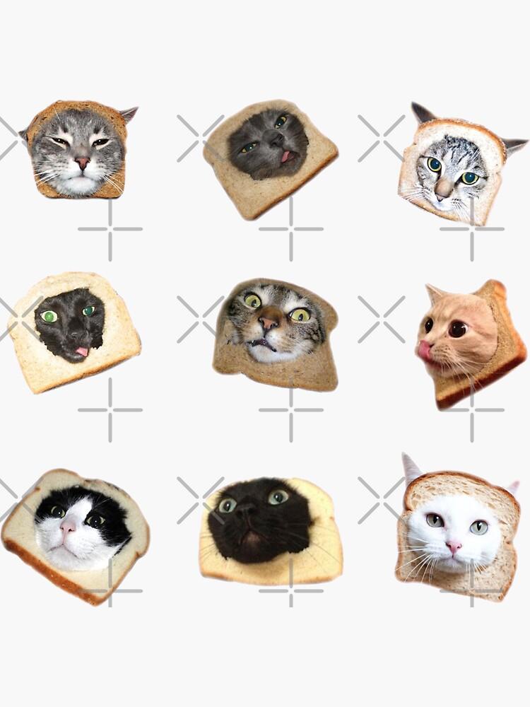 «Chatons de pain» par Elisecv