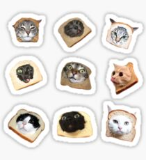 Brot Kätzchen Sticker