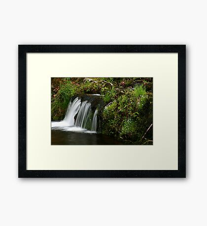 Spring Brook Framed Print