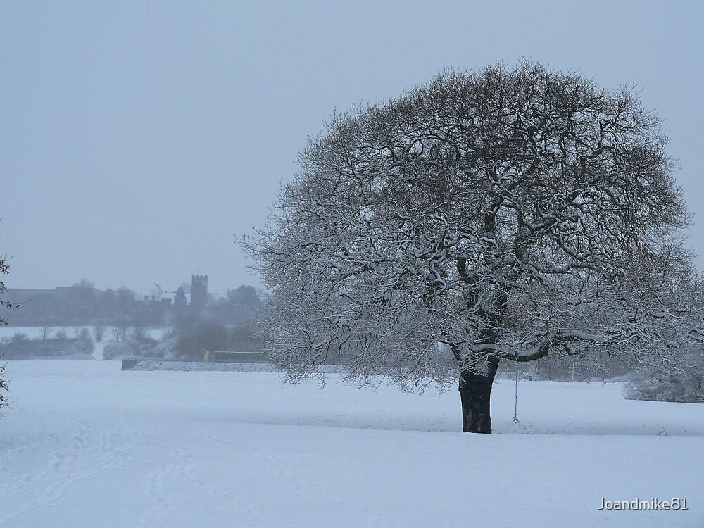 Snow Scene by Joandmike81