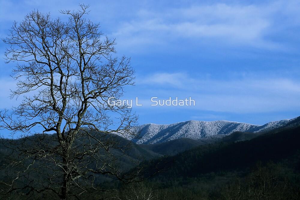 Snowy Blue Ridge by Gary L   Suddath