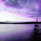 Purple Sky Reflection by Martha Medford