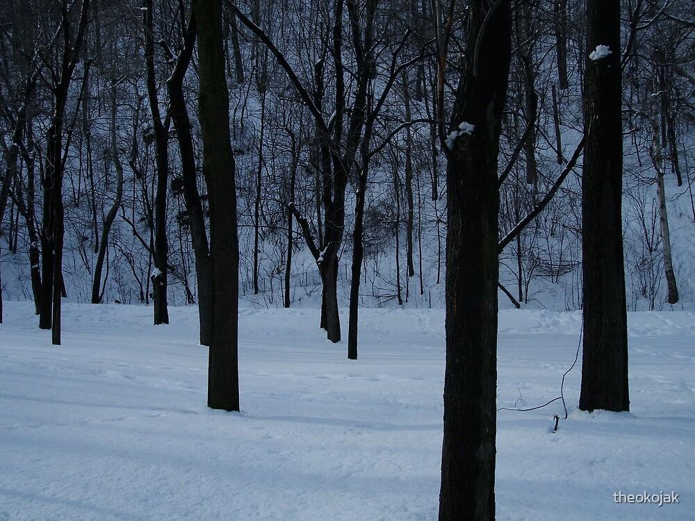 snow trees by theokojak