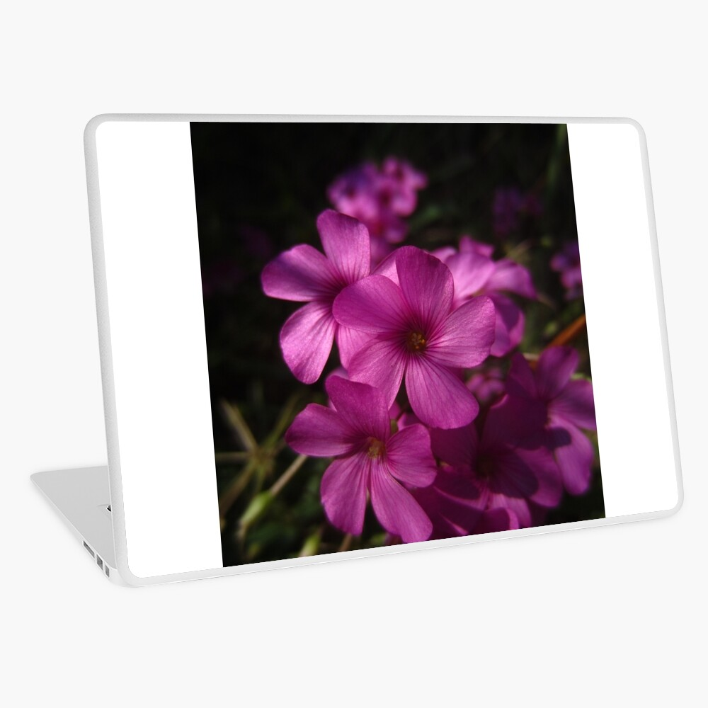 Pink-Sorrel Laptop Skin
