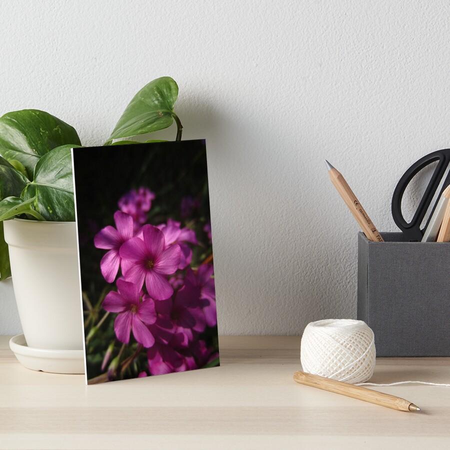 Pink-Sorrel Art Board Print