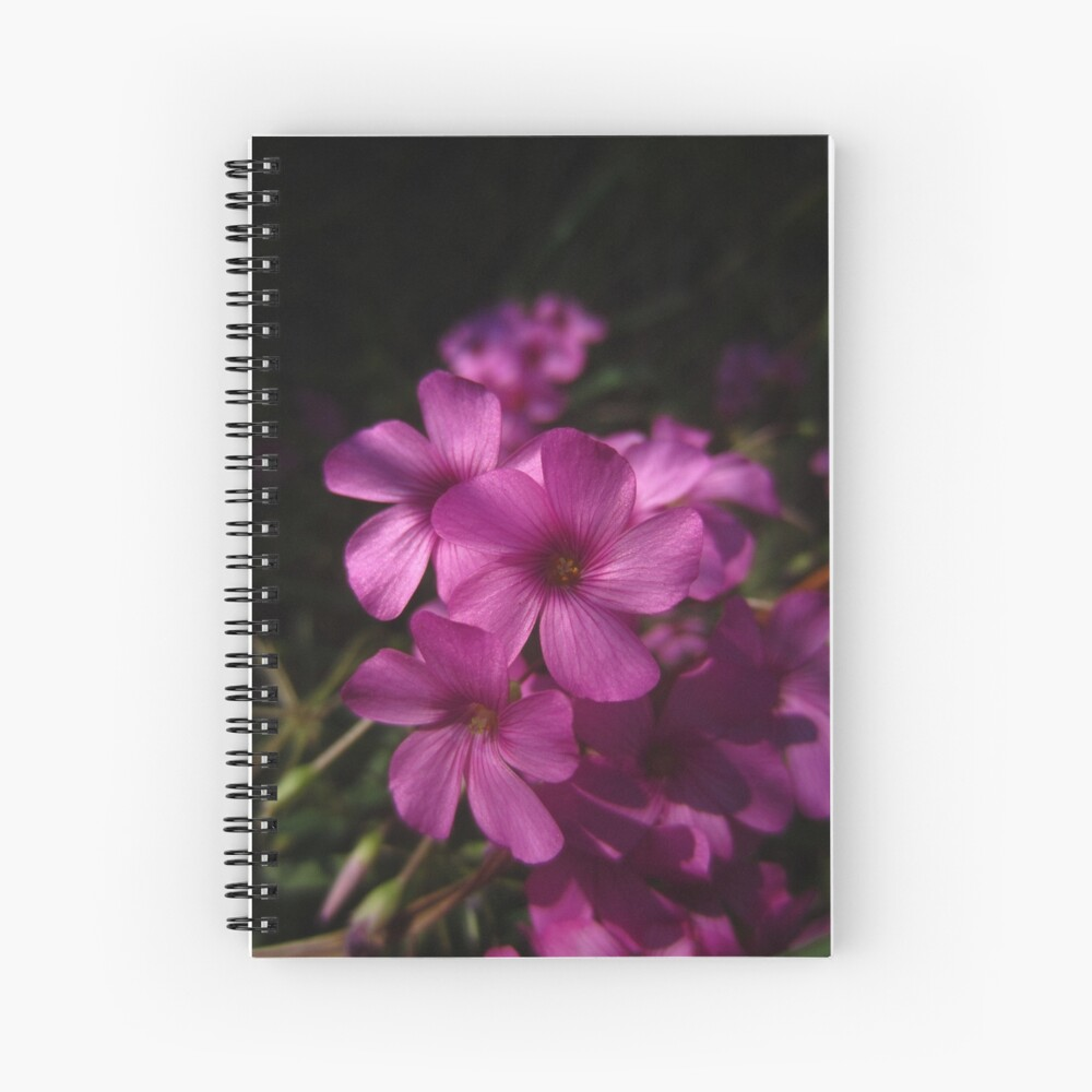 Pink-Sorrel Spiral Notebook