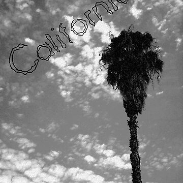 California by loo9210