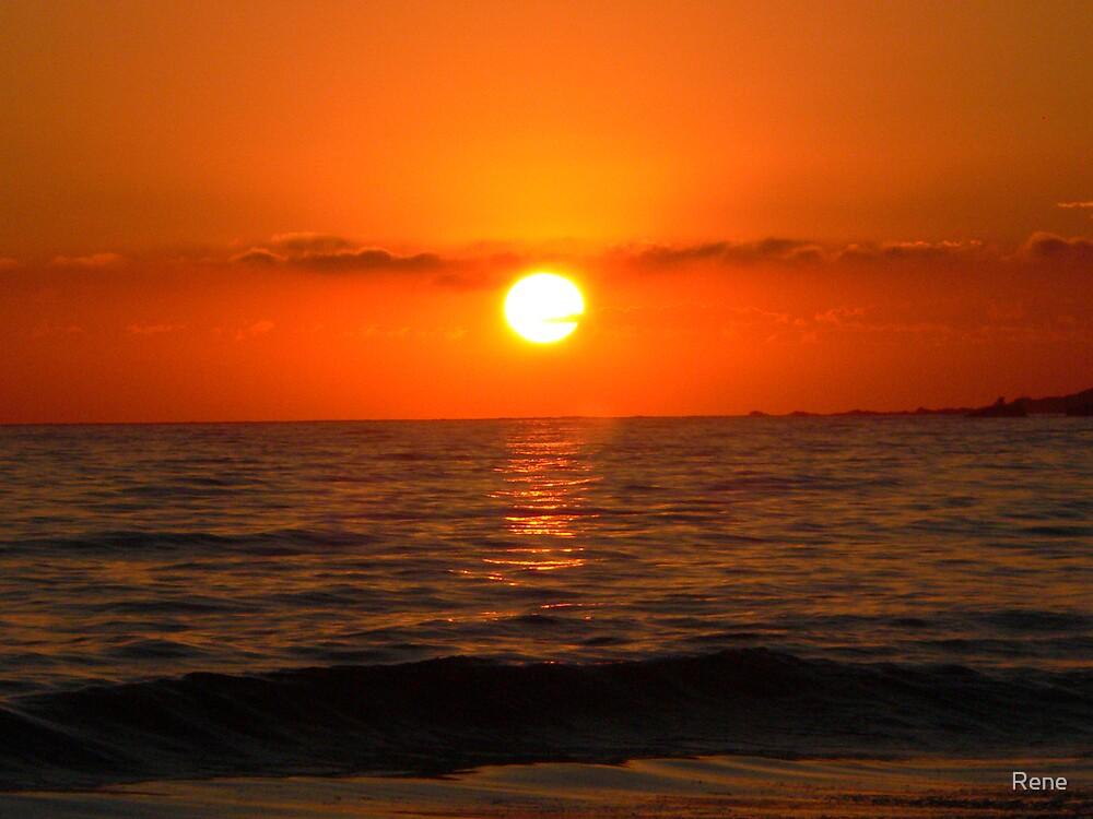 Sunrise in Byron by Rene