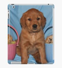 "Sophie "" What Do YOU MEAN WE are Cute?"" iPad Case/Skin"