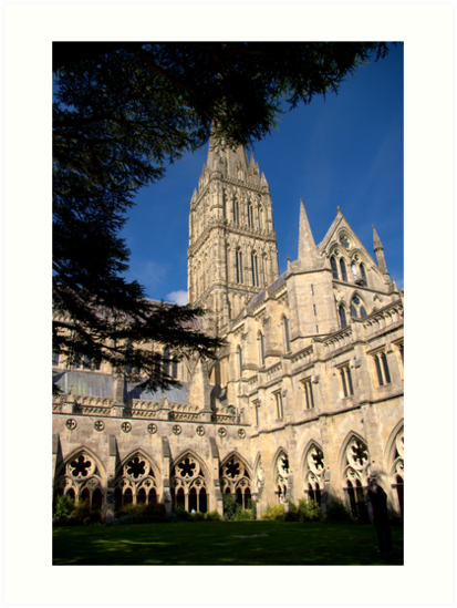 Salisbury Cathedral by John Thurgood