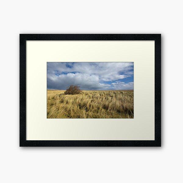 Northumberland Skies Framed Art Print