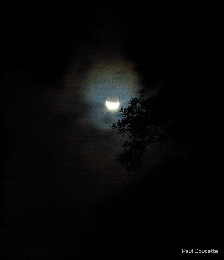 Lunar Eclipse 08/07 by Paul Doucette