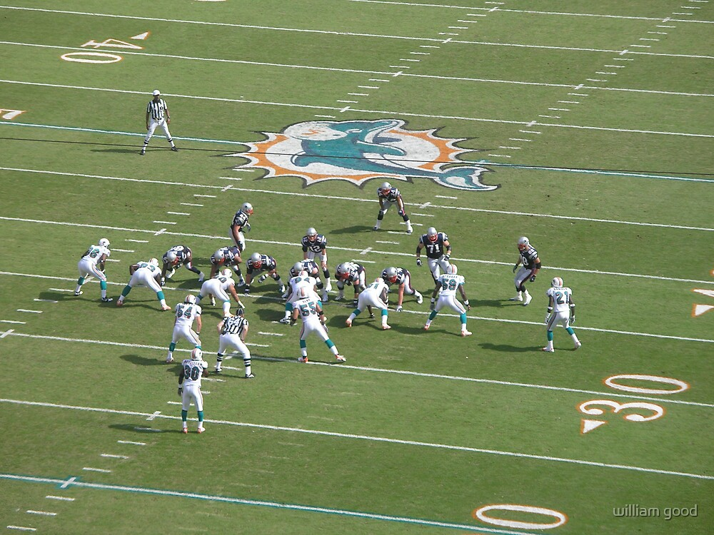 dolphins defence by william good