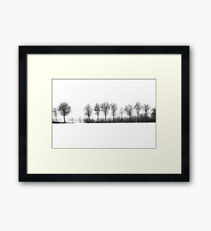 Winter bareness Framed Print