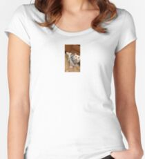 sweater pete Women's Fitted Scoop T-Shirt