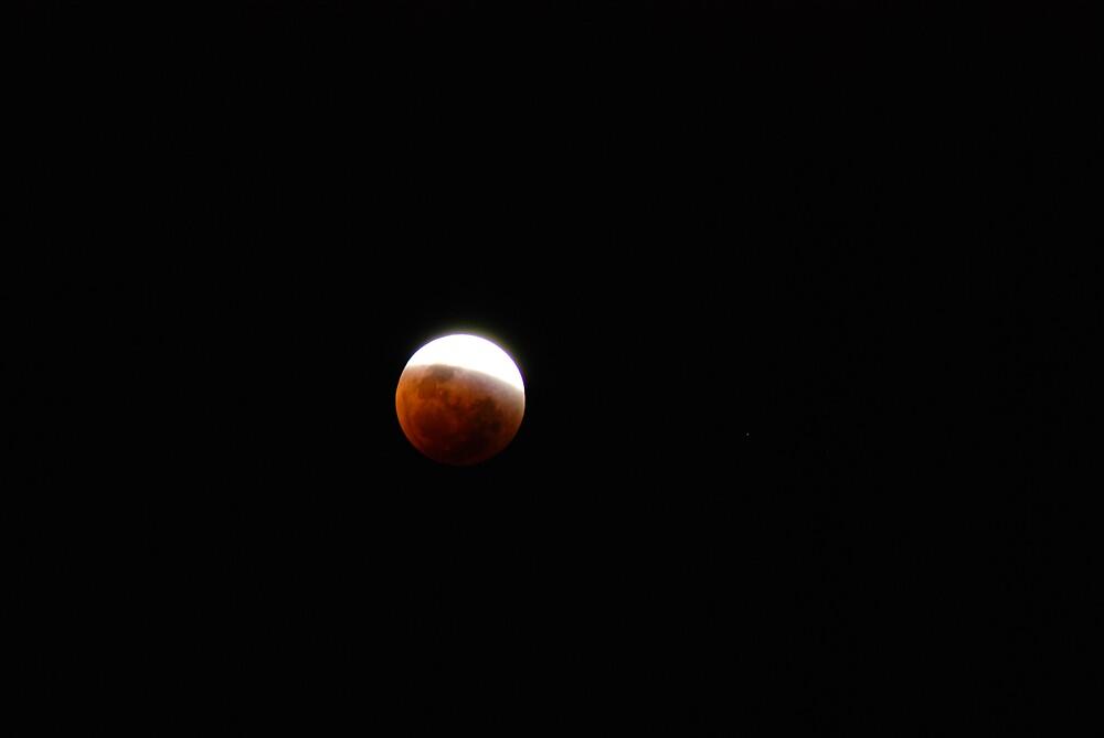 Lunar Eclipse by Chris  O'Mara