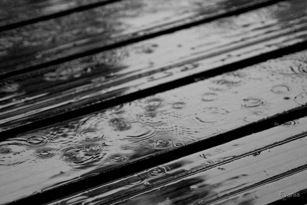 Rain by Evania