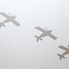 air show 4 by BlaizerB