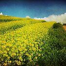 Oneiric spring by BlaizerB
