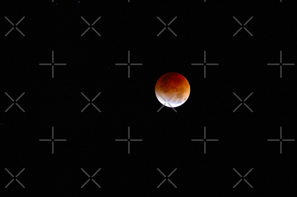 Colorado Lunar Eclipse by Holly Werner