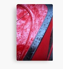 Damn, just waxed it! > Canvas Print