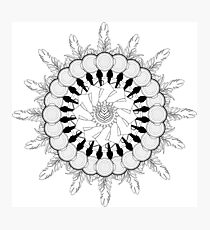 Barista Designs Mandala Photographic Print