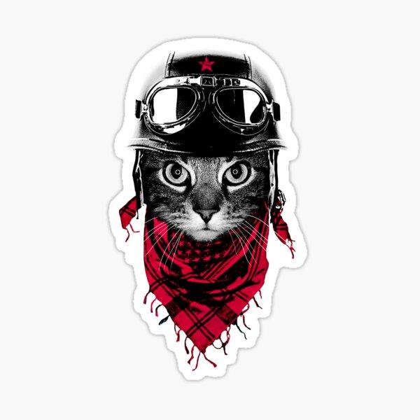 Adventurer Cat Sticker