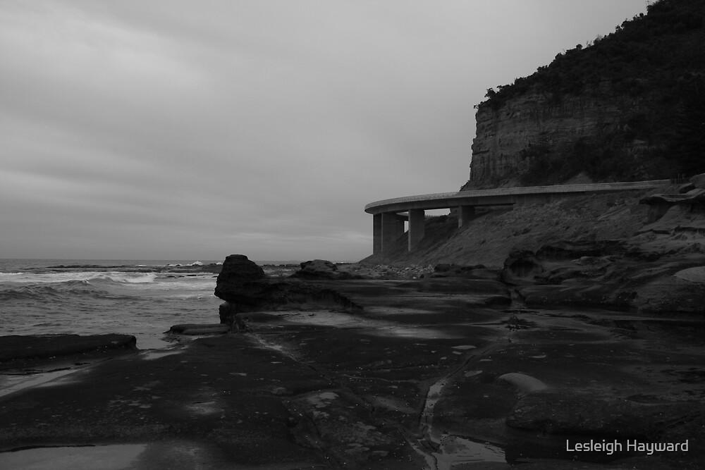 Seacliff Bridge by Lesleigh Hayward