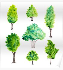 Watercolor green trees Poster