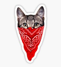 Gangster Cat Sticker