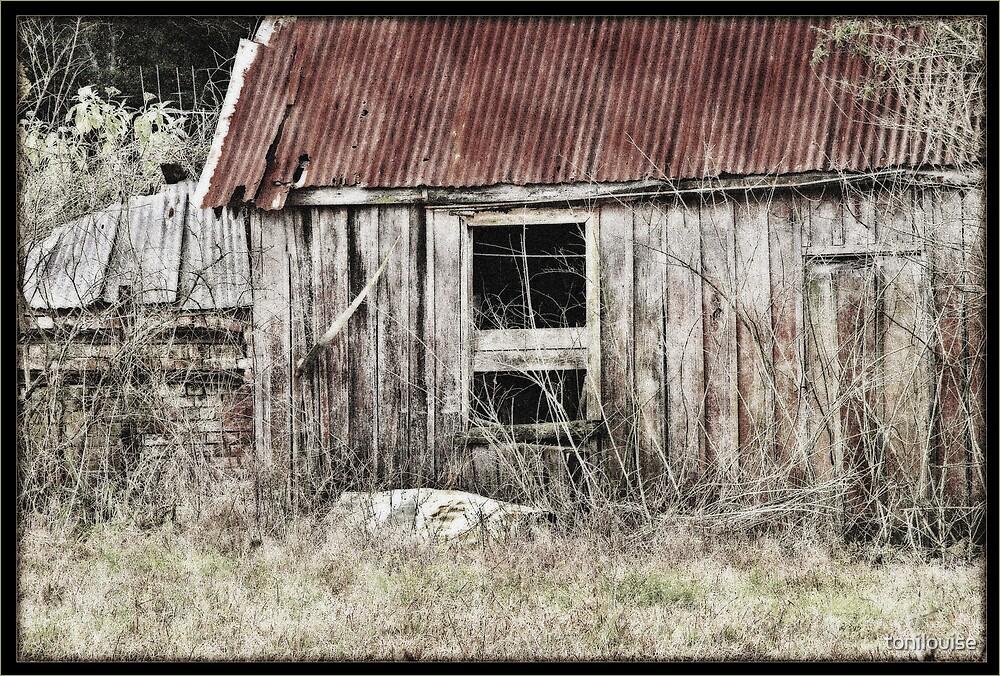 Long Forgotten by tonilouise