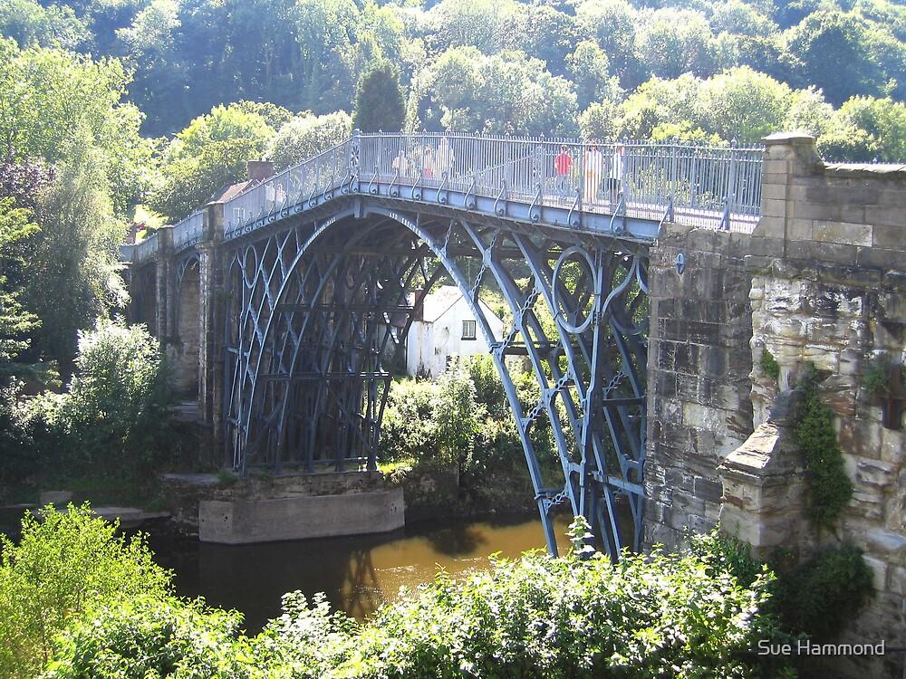 Ironbridge by Sue Hammond