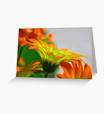Light Bulb Flower Greeting Card