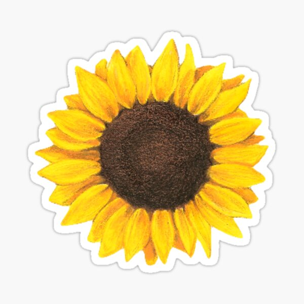 tournesol Sticker