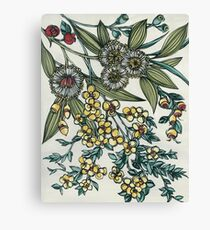 Retro Australian Native Floral Canvas Print