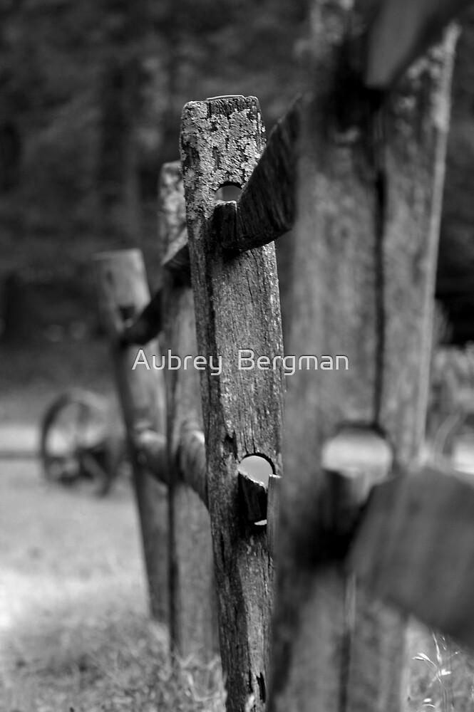 Fence Line by Aubrey  Bergman