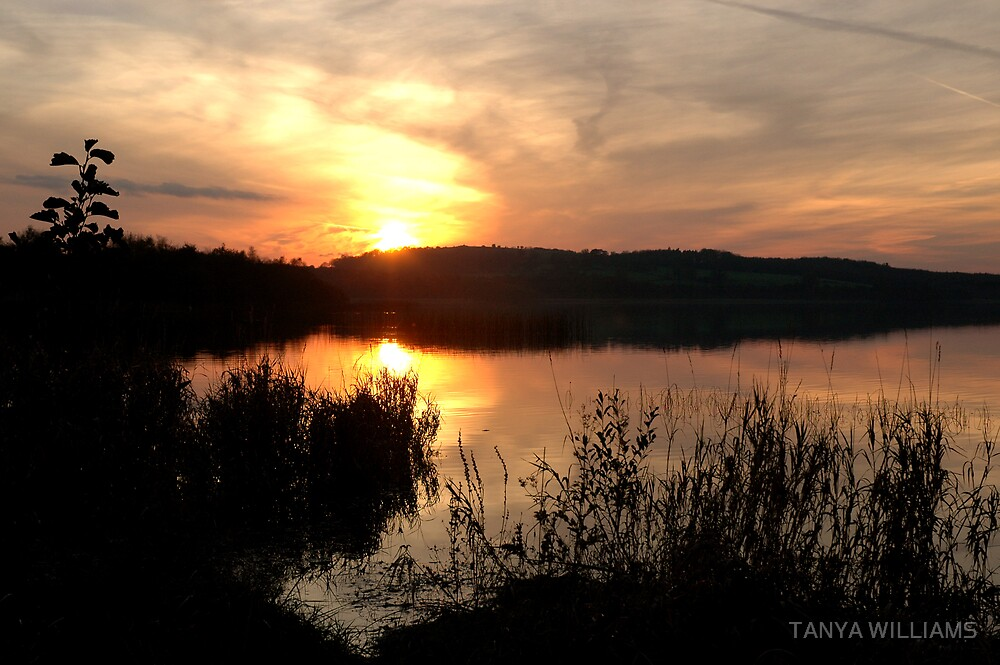 SUNSET IN CLARE by TANYA WILLIAMS