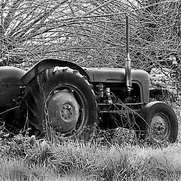 Old Tractor in Field by leizure