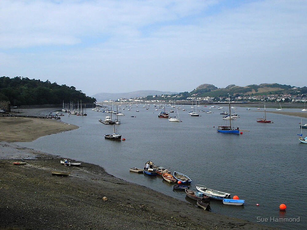 Conway harbour by Sue Hammond