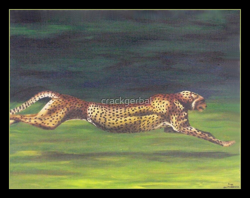Cheetah by crackgerbal