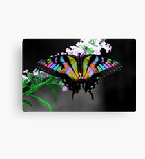 Multi-Colored Butterfly Canvas Print