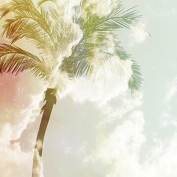 Sunset Palm by Kreativedna