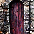 The Door by Jaime Hernandez