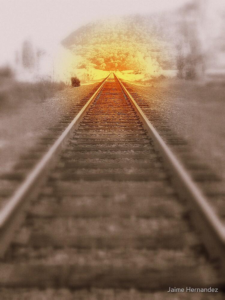 Journey by Jaime Hernandez