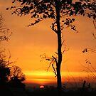 Sunrise 7307 by Jan Szymczuk