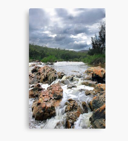 Avon River - Western Australia  Canvas Print