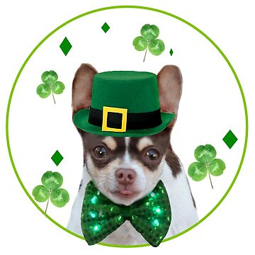 St. Patricks Day Chihuahua by ritmoboxers