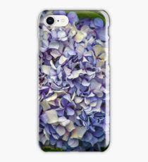 Blue and White Hydrangea iPhone Case/Skin