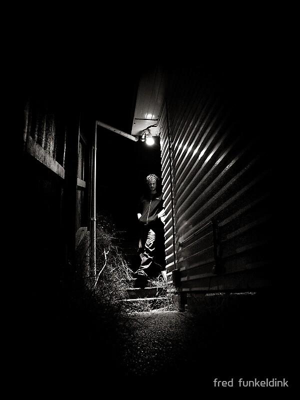dark by fred  funkeldink